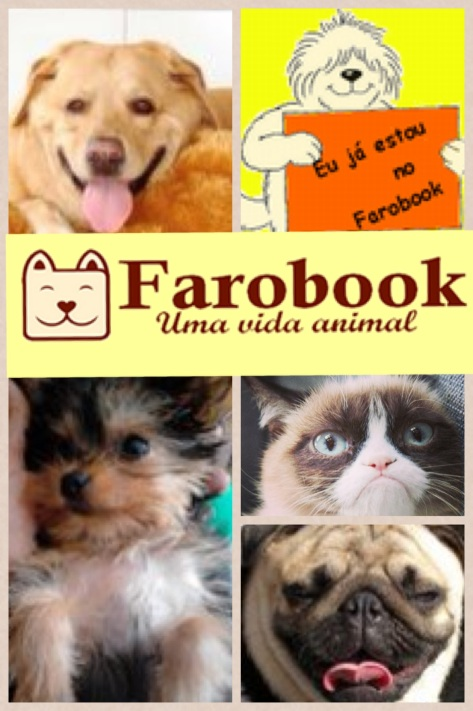 kasualkool_farobook