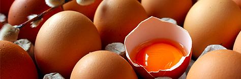 kasualkool ovos vitaminas da beleza